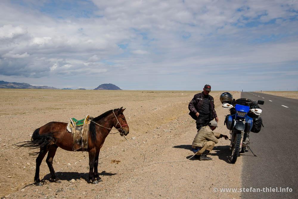 Fachgespräche über Pferdestärken